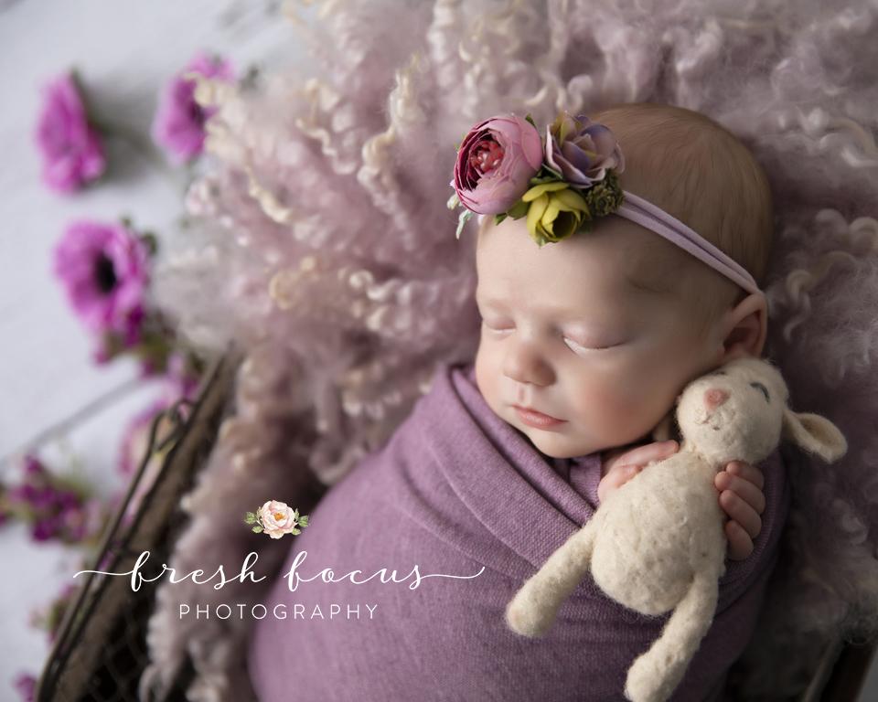 LavenderFreshFocus copy